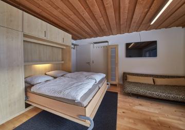 Living room/Bedroom